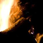 Огонь, полено, мысли ...